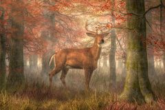Fall Buck. A buck stands near the viewer. It`s late fall and the hunting season for deer, so he is quite alert. He stands among deep golden grass and tall trees vector illustration