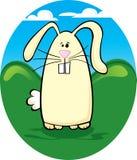 Buck Tooth Bunny. Cartoon vector bunny in the grass Stock Photo
