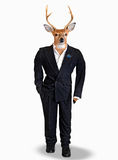 Buck in a a wedding tuxedo Royalty Free Stock Photos