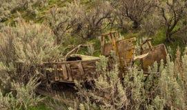 Buckboard furgon Gubjący w bylicie fotografia royalty free