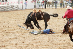 Bucked off. A saddle bronc rider is bucked off during  a rodeo Royalty Free Stock Photography