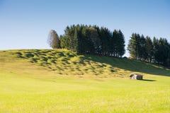Buckelwiesen Photos libres de droits