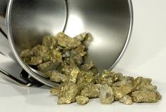 bucket золото Стоковое фото RF