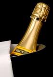 bucket льдед шампанского Стоковая Фотография