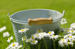 A bucket Royalty Free Stock Photo