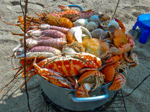Bucket with all kind of vietnamese seafood. Phu Quoc, Vietnam, Jan 28, 2013 Stock Images