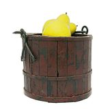 Bucket of apples Royalty Free Stock Photos