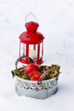 Bucket of apples and red lantern on the snow Stock Photography
