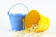 Bucket of beans Stock Photography