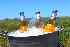 Bucket of beers on ice in a picnic setting Stock Photo