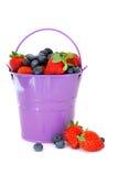 Bucket of Berries Stock Image