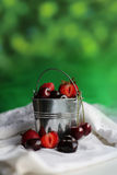 Bucket with berries Royalty Free Stock Image