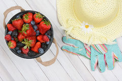 Bucket Berries and Sun Hat. High angle shot of an old metal bucket of fresh picked berries on a rustic whitewashed wood table. A yellow sun hat and gardening Stock Image
