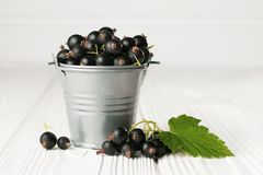 Bucket of black currant and green leaf on a white wooden table royalty free stock image