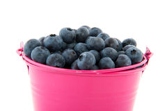 Bucket Blueberries Royalty Free Stock Image
