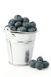 Bucket Of Blueberries Royalty Free Stock Photo