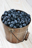 Bucket of Blueberries on Rustic Table Royalty Free Stock Image