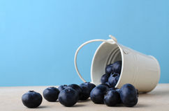 Bucket of Blueberries Spilling on to Wooden Table with Light Blu royalty free stock photo