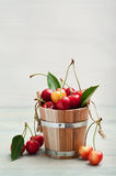 The bucket of cherries Royalty Free Stock Photography