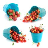 The bucket of cherries and strawberries set Royalty Free Stock Photo