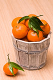 Bucket Of Clementines Royalty Free Stock Photos