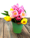 Bucket with colorful tulips Stock Image
