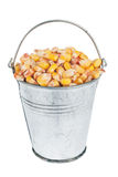 Bucket with  corn Royalty Free Stock Images