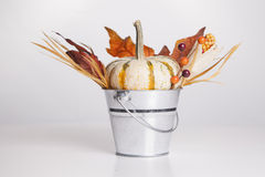 Bucket of Fall Royalty Free Stock Photo