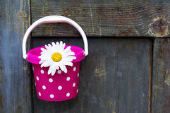 Bucket with flower Stock Photography