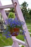 Bucket of flowers Stock Image