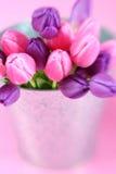 Bucket of Flowers Stock Photos