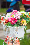 Bucket flowers Royalty Free Stock Photography