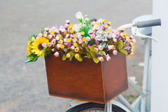 Bucket flowers Stock Image