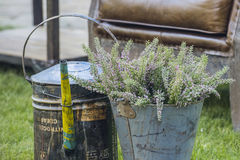 Bucket with flowers on the lawn.  stock photos