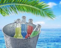 Bucket with four bottle of refreshment drink with sea background. And palm leaf Royalty Free Stock Photography