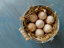 Bucket of fresh eggs. Traditional iron bucket with fresh eggs (organic) from our own chickens Royalty Free Stock Images