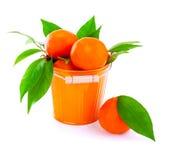 Bucket of fresh mandarins Stock Photo