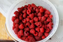 Bucket of fresh raspberries background closeup. Bucket of fresh raspberries background close-up Royalty Free Stock Photography
