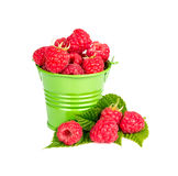 Bucket with fresh raspberries. Isolated on a white background Royalty Free Stock Images