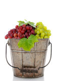 Bucket of Fresh Ripe Grapes Royalty Free Stock Photos