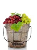 Bucket of Fresh Ripe Grapes Royalty Free Stock Photos