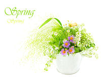 Bucket of fresh spring wild flowers Royalty Free Stock Photos