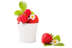 Bucket with fresh strawberry on the isolated white Stock Photography