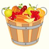 Bucket with fruit and berry. On white background is insulated Stock Photography