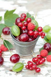 The bucket full of different berries Royalty Free Stock Images