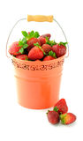 Bucket full of fresh strawberries. Isolated on white Stock Photos