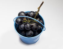Bucket full with grape Royalty Free Stock Images