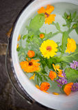 Bucket full of pure water and flowers Stock Photos