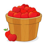 Bucket Full of Red Apples Stock Images