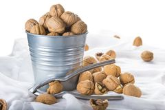 Bucket full of walnuts with a nutcracker on a white background Royalty Free Stock Photo